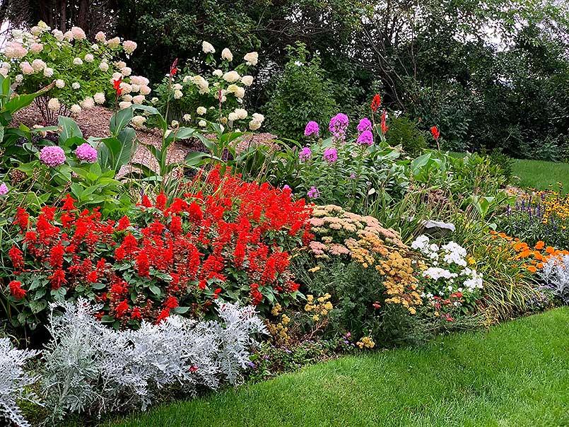 Beautiful perennial garden in Grafton Wisconsin