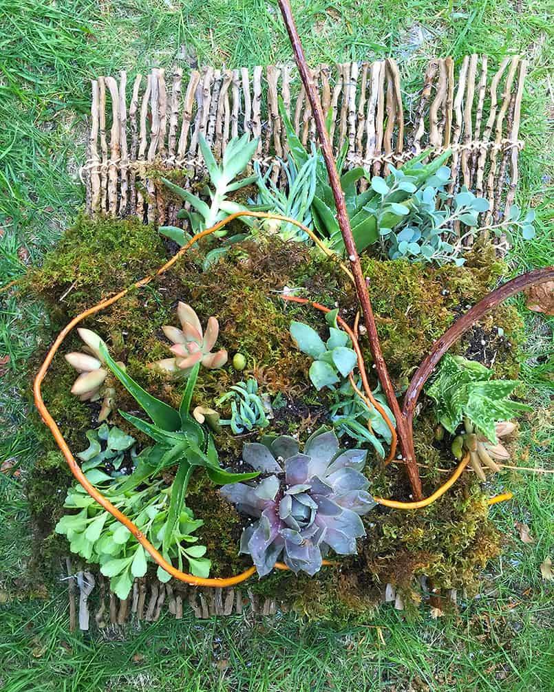 DIY for a hanging succulent garden planter